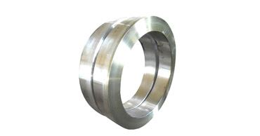Duplex Steel Rings Exporters Manufacturers Suppliers Dealers in Mumbai India