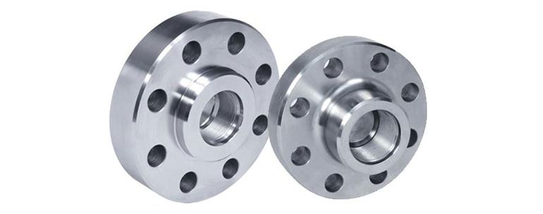 Stainless Steel Companion Flanges Manufacturers Exporters in Mumbai India